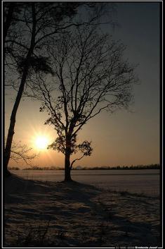 Západ slunce zaSosnovou